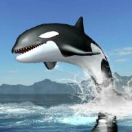 我的动物世界之鲸鱼的世界