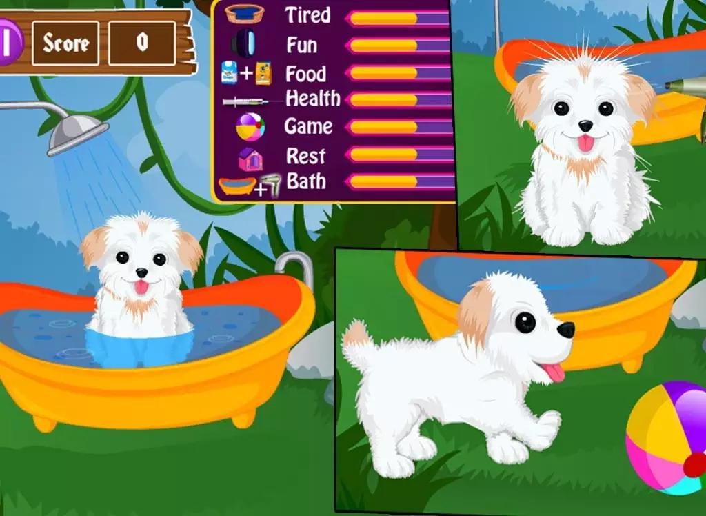 有惊人的宠物和可爱的小狗在这个游戏!