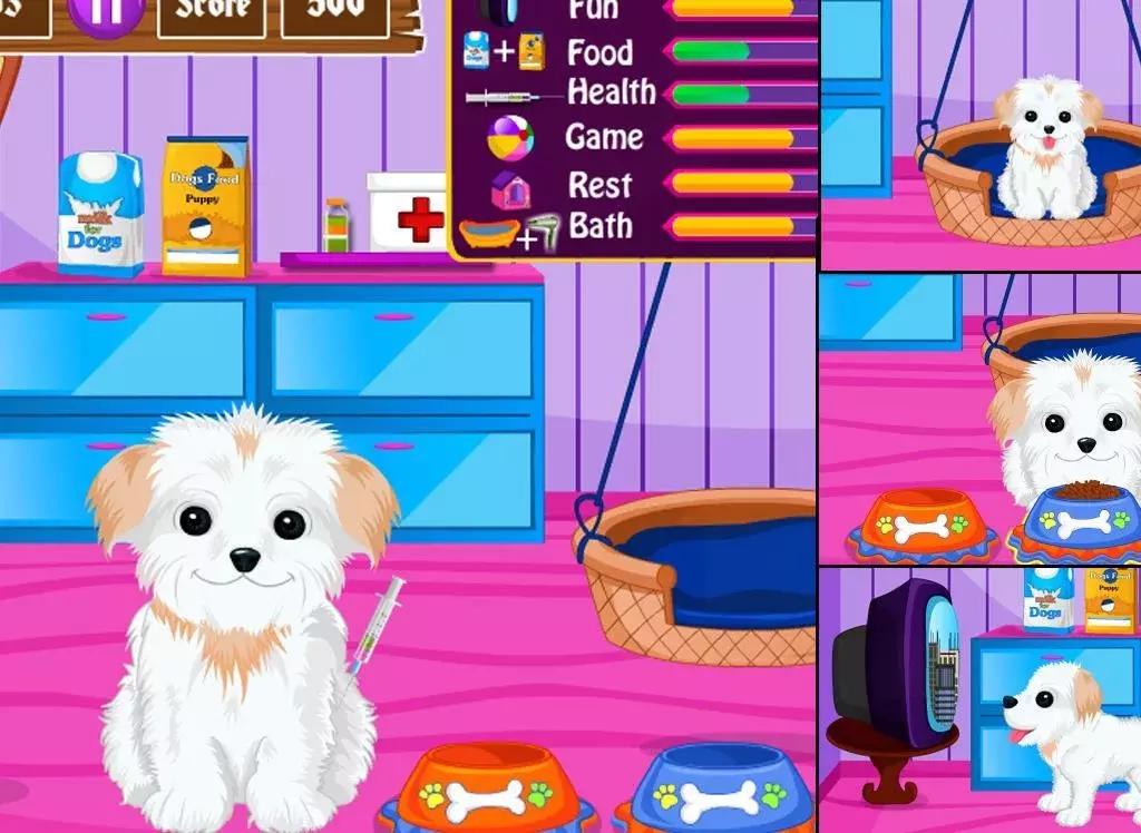 聊天通讯 可爱的小狗关怀 - 宠物沙龙下载,可爱的小狗